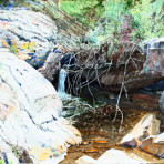 Mt Lemmon Runoff